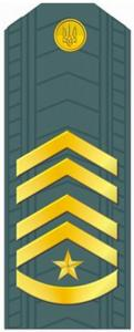 Senior Warrant Officer of the Armed Forces of Ukraine