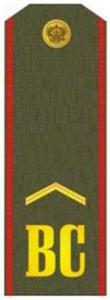 "Shoulder Strap ""Lance-corporal"" Russia's Armed Forces"