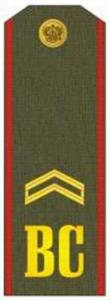 "Shoulder Strap ""Junior Sergeant"" Russia's Armed Forces"