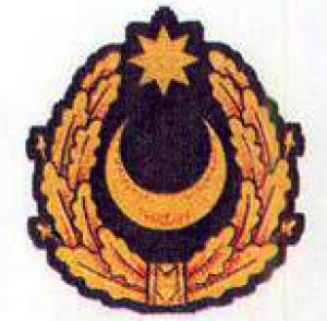 Cap Badge of Land Forces of the Armed Forces of Azerbaijan
