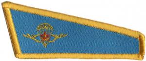 Berets flash patch of airborne troops of the Republic of Kazakhstan #2