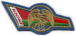 The 38th Mobile Brigade Flash Berets Patch of the Armed Forces of the Republic of Belarus