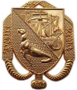 Officer's badge of Falkland Island Defence Force. British Overseas Territories