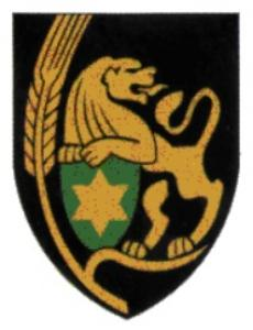 Armor Shoulder Tag of Israel Defense Forces