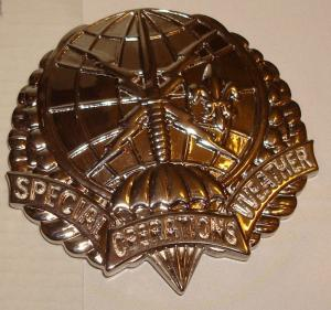 Air Force  Special Operations Weather Technician beret badge