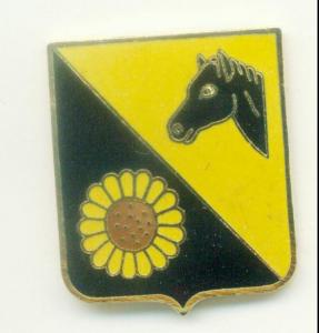 29th Cavalry regiment