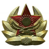Soldiers Cap Badge of the Armed Forces of the Republic of Kazakhstan