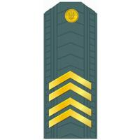 Senior Sergeant of the Armed Forces of Ukraine