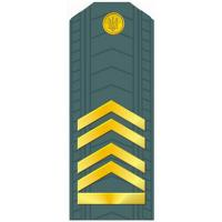 Master Sergeant of the Armed Forces of Ukraine