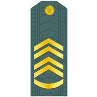 Warrant Officer of the Armed Forces of Ukraine