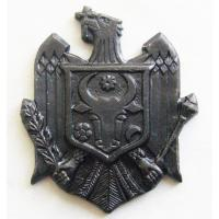 Soldier's Subdued Badge of the Border Guard of the Republic of Moldova