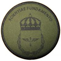 Military Patch. Armed Forces Sweden