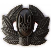 Private Soldiers, Sergeant, Warrant officer Hat / Cap Subdued Badge (plastic) of Armed Forces UKRAINE