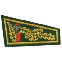 Beret Flash Patch of the Border Troops of the Republic of Belarus #2