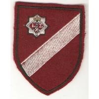 National Guard patche, 2 variant /Latvian National Armed Forces/