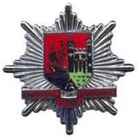 Bristol Fire Brigade, cap badge