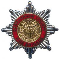 Caernarvon County Fire Brigade, cap badge