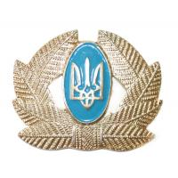 Soldier, combined arms  Badge Armed Forces of Ukraine #1