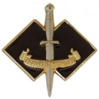 COMMANDO REGIMENT BADGE ROYAL AUSTRALIAN ARMY