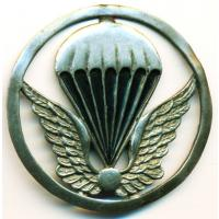 Paratrooper beret badge