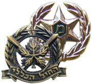 Headgear Badges & Insignias