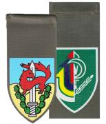 Infantry Regular & Reserve Units Shoulder Tags