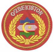 Motorized Troops Patches