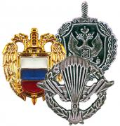 Arms Insignias