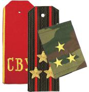 Rank Insignia, Shoulder Straps